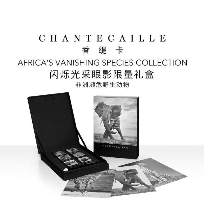 香缇卡闪烁光彩眼影盘6色组合装礼盒